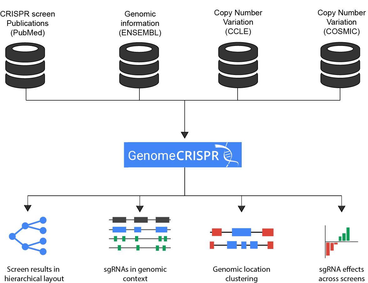 GenomeCRISPR concept